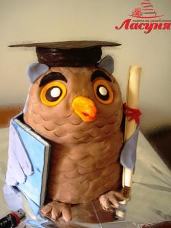 #п200(3) торт на выпускной Мудрая Сова