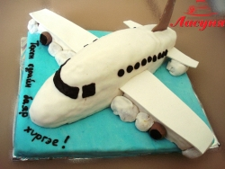 #д140(13) торт Самолёт