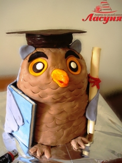 #п200(3) торт для выпускника сова