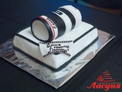 #п220(11) торт объектив к фотоаппарату