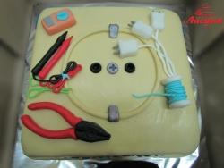 #п150(24) торт для электрика розетка и инструменты