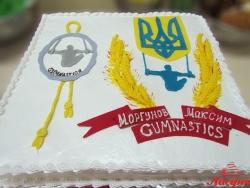 #п150(35) торт для гимнаста