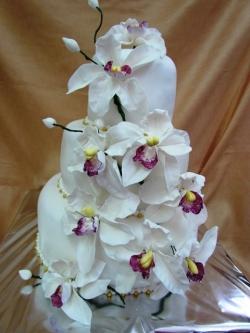 #c250 (13) свадебный торт с орхидеями